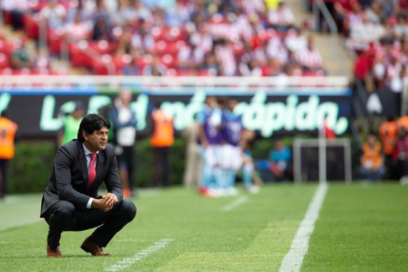 El entrenador de Chivas, José Cardozo, durante un partido celebrado en el estadio Akron, en Guadalajara, Jalisco (México). EFE/Archivo