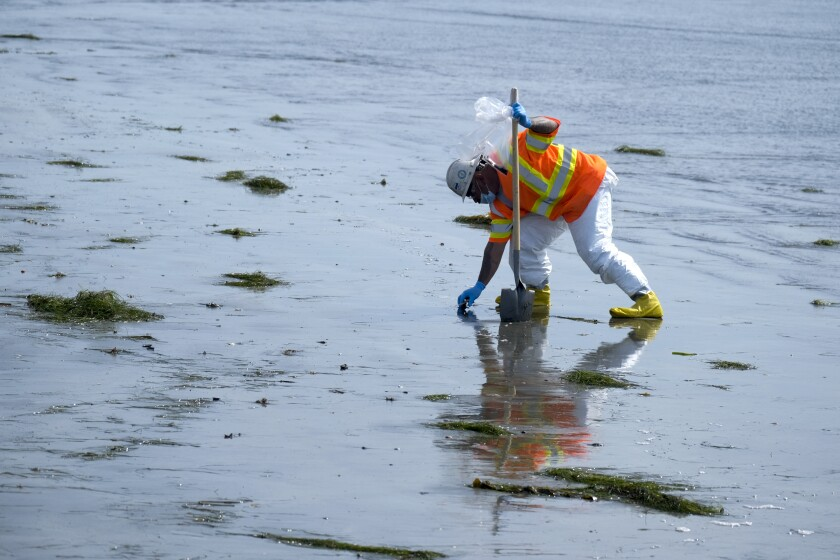 A worker in protective suit cleans the contaminated beach after an oil spill in Newport Beach.