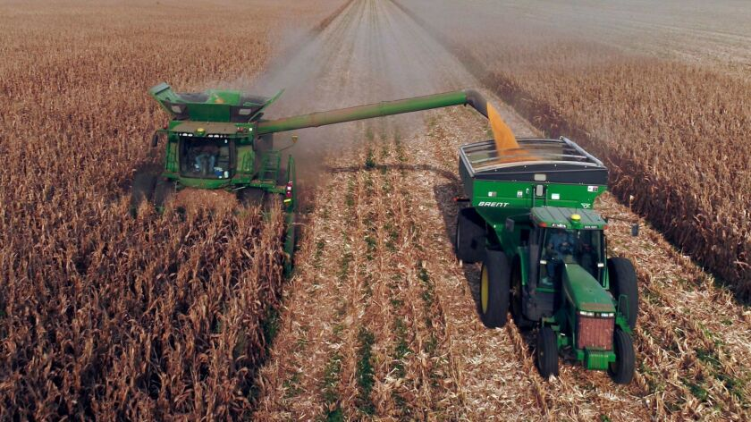 Corn is harvested on a family farm in Kansas.