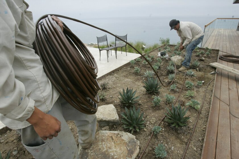 Workers for a San Diego contracting firm install a water-conserving drip irrigation system in the seaside gardens of a La Jolla home. JOHN GIBBINS • U-T