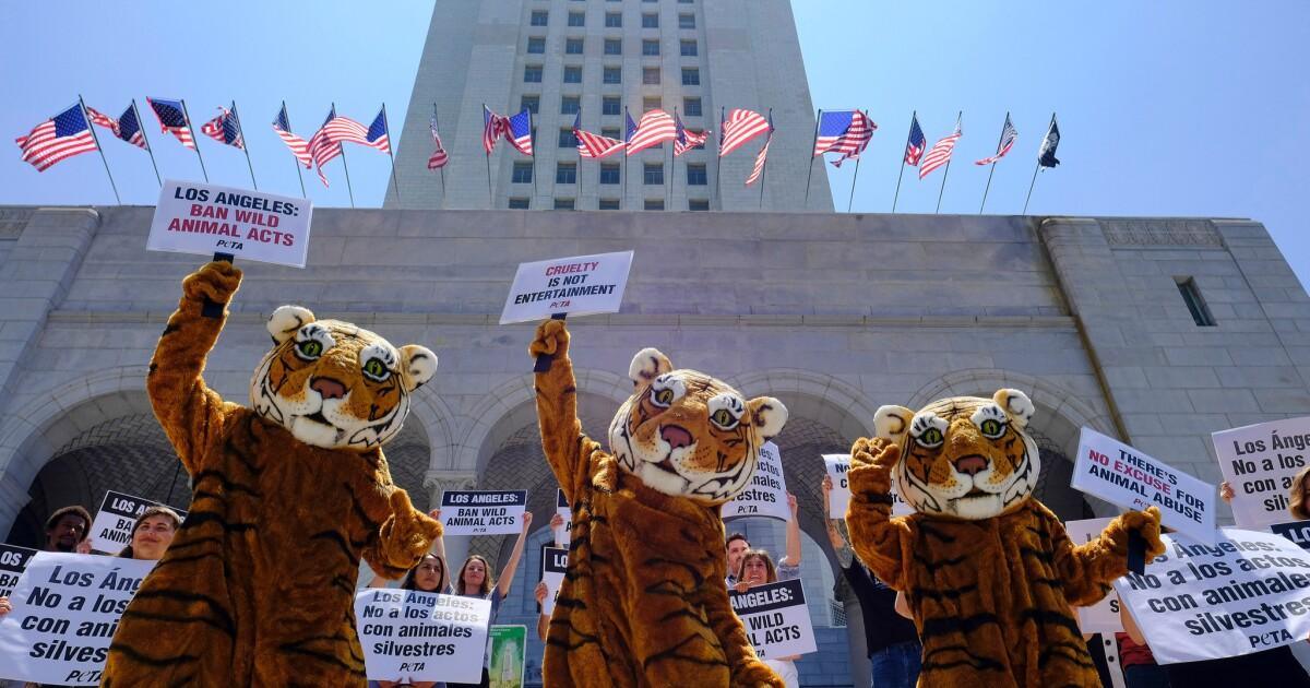 Λ. Α. απαγορεύει τα εξωτικά ζώα από τα μέρη σπίτι