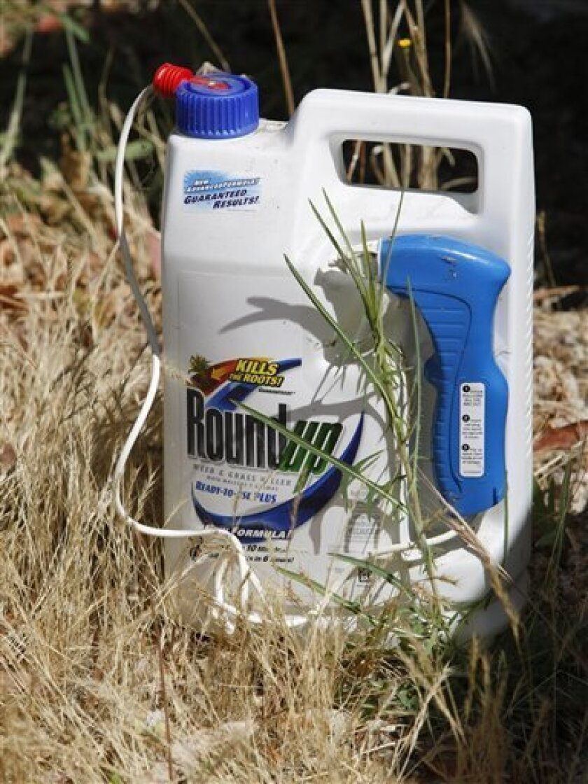 FILE - In this June 30, 2010 file photo, a bottle of Roundup weed-killer, by Monsanto Co. is displayed in a weeded area in Palo Alto, Calif. Agricultural products maker Monsanto Co. is reporting a smaller loss for its fiscal fourth quarter than a year ago as its revenue increased. (AP Photo/Paul Sakuma, file)