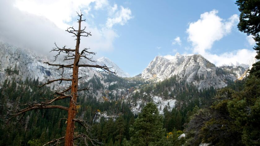 A man died after falling while climbing Mt. Whitney on Friday. The next day, a woman died after falling into the Kaweah River in Sequoia National Park.