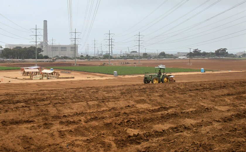 A tractor plows part of the strawberry fields along Interstate 5 near Cannon Road, where a Nordstrom-anchored shopping center has been proposed.