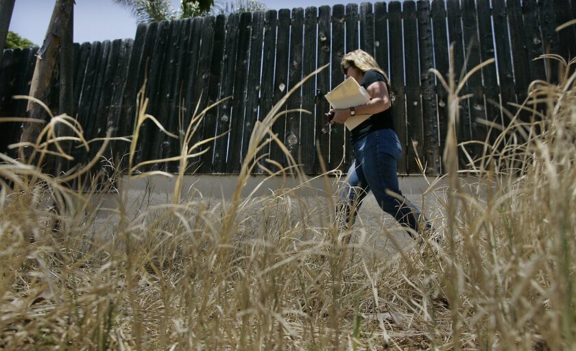 Sandi Stephens, code enforcement officer with the city of Chula Vista, walked by tall weeds while inspecting a bank-owned home last week. (Eduardo Contreras / Union-Tribune)