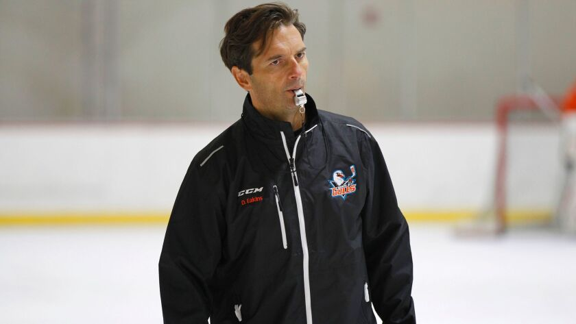 Gulls coach Dallas Eakins's team ran into a hot goaltender on Saturday night.