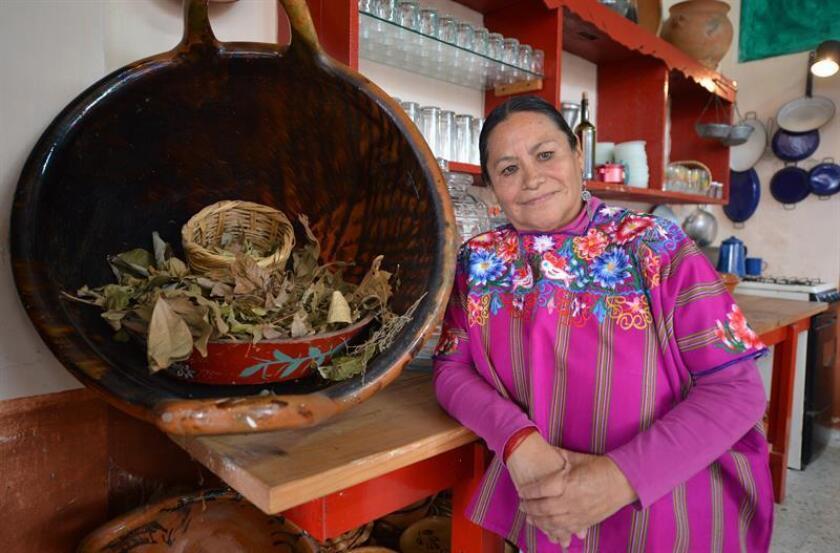 Fotografía que muestra a la cocinera mexicana Raquel Torres Cerdán durante una entrevista con Efe, en su cocina en el estado de Veracruz (México). EFE