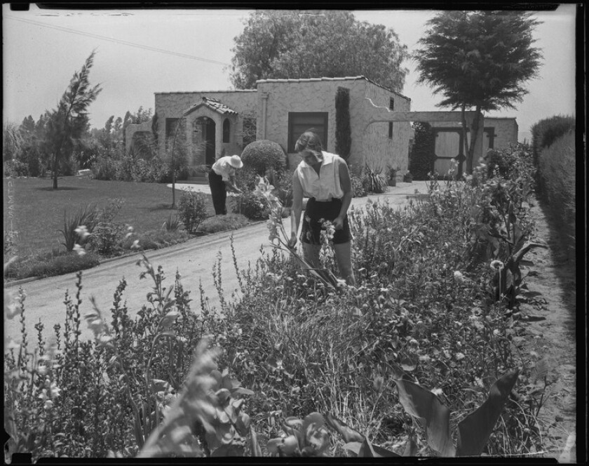Members of the Wood family pick flowers at their small farm home in the San Fernando Valley in 1935.