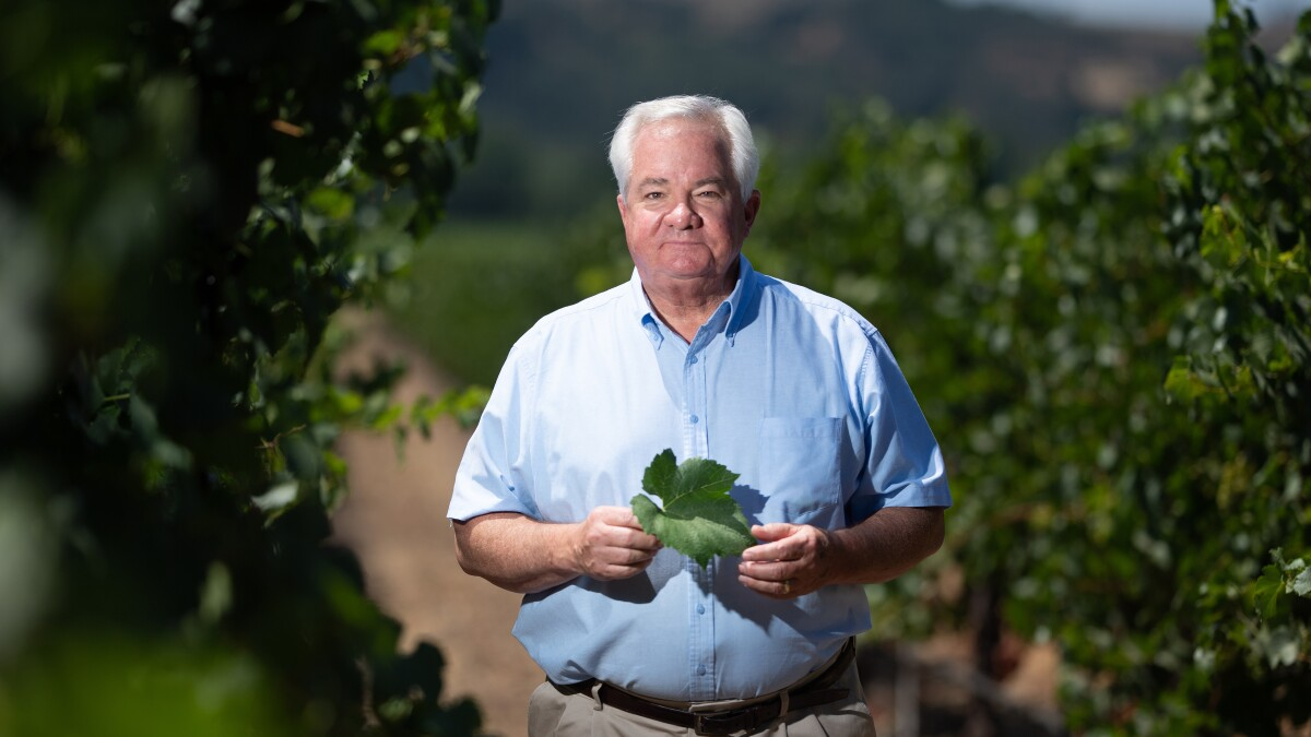 California wine may be the next casualty of Trump's trade war with China