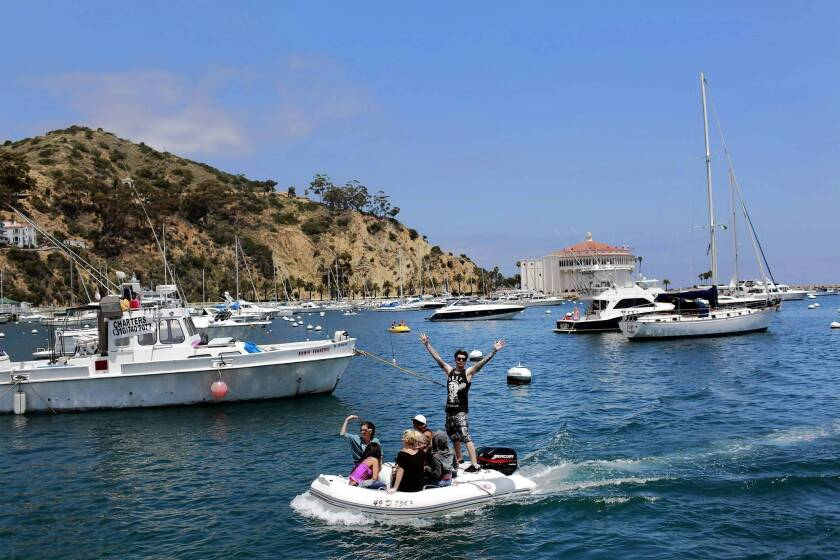 Head Of Catalina Island Conservancy At Center Of Controversy Los Angeles Times