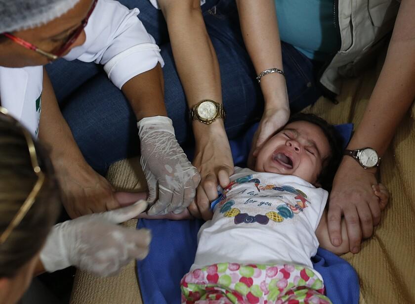 Trabajadores de Brasil y de Estados Unidos le sacan sangre a una bebé de tres meses, Esther Kamily, en su casa de Joao Pessoa, Brasil, como parte de una campaña para recabar información que permita comprobar científicamente un vínculo entre el virus del zika y la microcefalia. (AP Photo/Andre Penner)