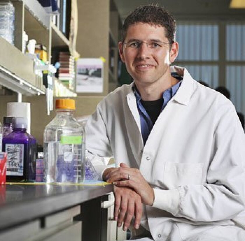 Shane Crotty of the La Jolla Institute for Immunology led new research on a protein called Bcl6.