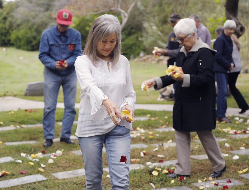Volunteers drop rose petals on the graves of infants