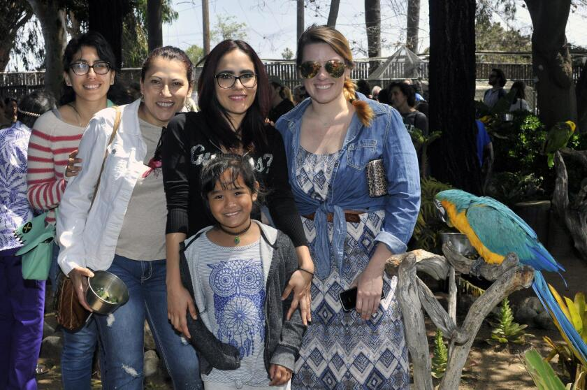 Jasmine Sandoval, Alma Sandoval, Lizeth Sandoval, Ardennes, Brittini McDowell