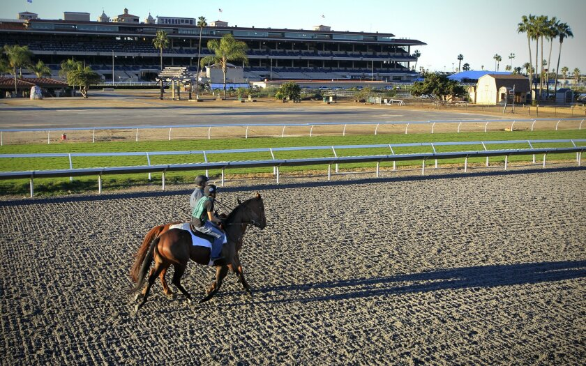 A horse works out at the Del Mar racetrack. Friday, November 7th is the opening day of the Bing Crosby Season and is the first time since the 1960s the horses have raced at Del Mar in the Fall.