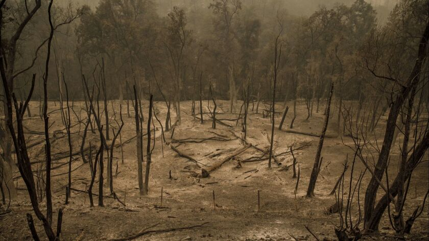 Charred landscape from the spread of a wildfire outside of Redding, Calif., on July 29.