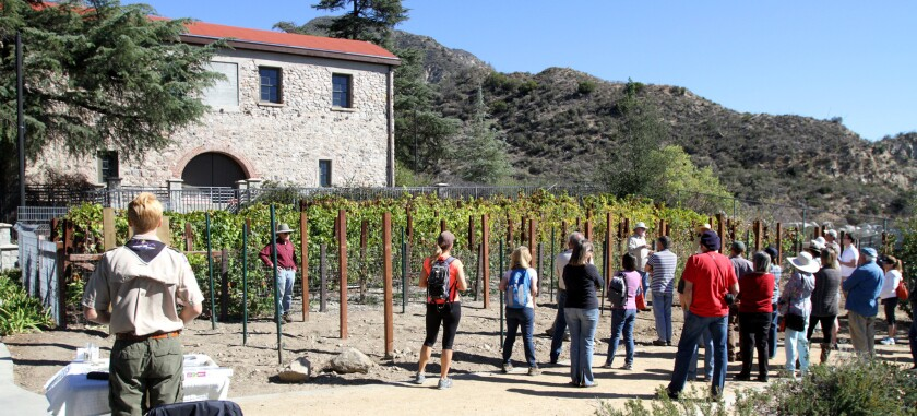 History of Winemaking in the Crescenta Valley