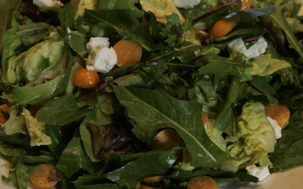 Dandelion greens salad with gooseberries and cilantro vinaigrette (Maskrossallad)