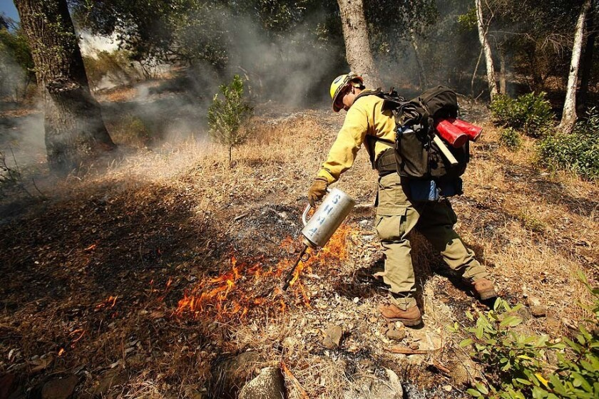 Ty Charlton with the Rio Bravo Hotshots firefighting crew lights a backfire near the Upper Oso campground in the Las Padres National Forest.