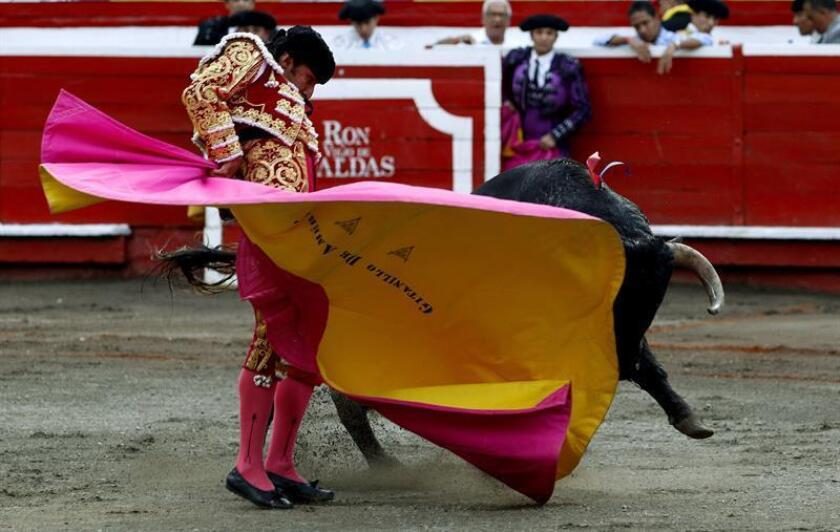 El novillero colombiano Gitanillo Jr. torea hoy, durante el tercer día de la temporada taurina de la feria de Manizales (Colombia). EFE