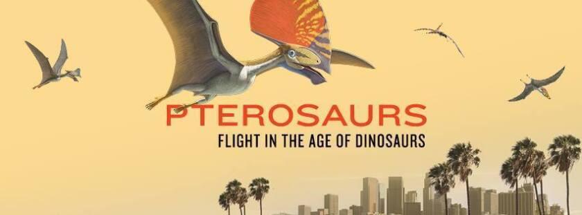 Foto de las redes sociales del Museo de Historia Natural de Los Ángeles.