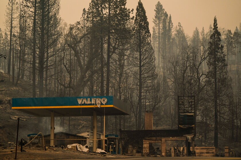 A burned-out gas station sits among tall, blackened trees
