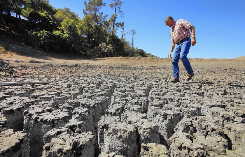 Drought in Cambria, Calif.