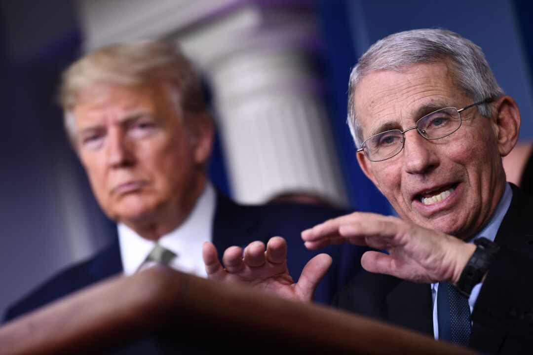 Dr. Anthony Fauci speaks as President Trump listens during a COVID-19 press briefing.