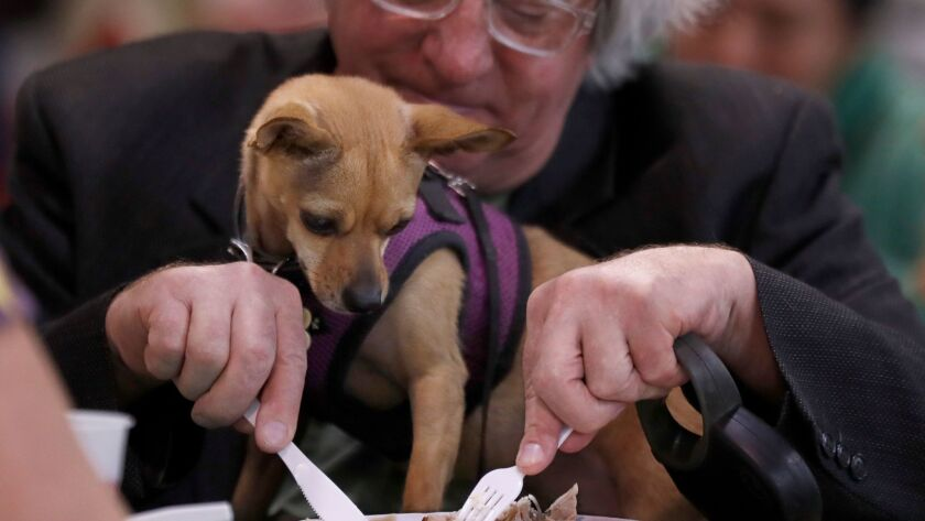 LOS ANGELES, CALIF. - DEC. 25, 2017. JIm Foley, 62, shares a Christmas meal with his dog Isabelle