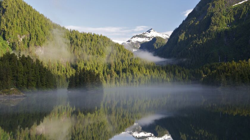 Calm water within a bay in Tongass National Park in Alaska on July 7, 2012.