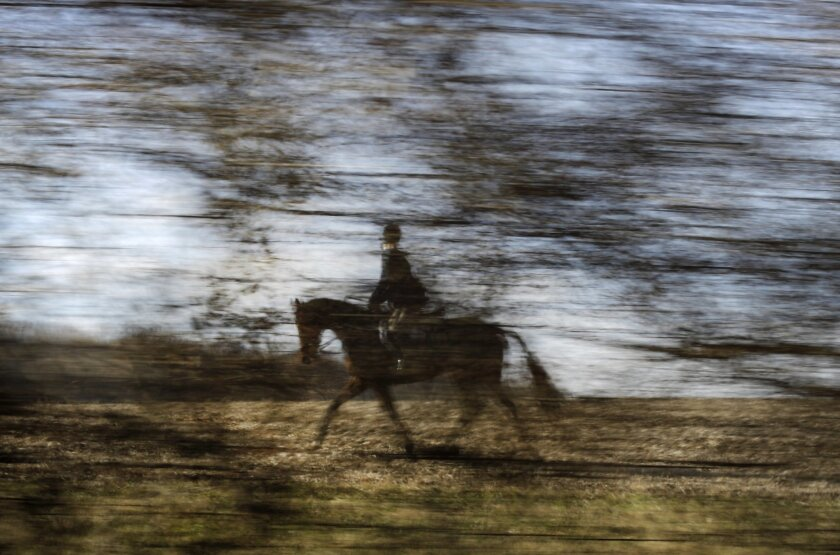 AP10ThingsToSee - In this Nov. 29, 2014 photo made with a slow shutter speed, a member of the Elkridge-Harford Hunt Club is seen through trees during a fox hunt in Monkton, Md. (AP Photo/Patrick Semansky)