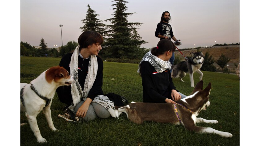 Twins Setayesh, left,  and Sogand Ghadimi, 16, with their dogs, Hagen and Russell. In the background is Hashim Mahmoud with his husky, Jessica.