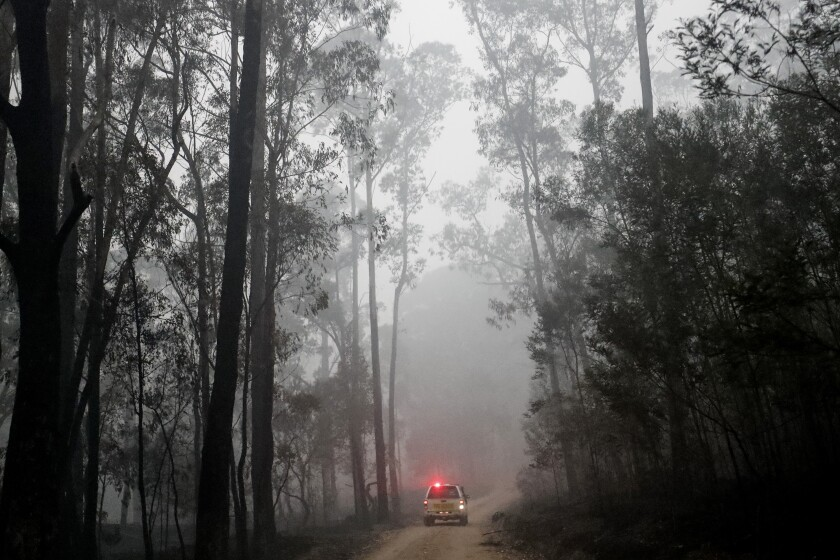 Members of a fire and rescue crew drive through a charred forest outside Cann River, Australia, on Tuesday.