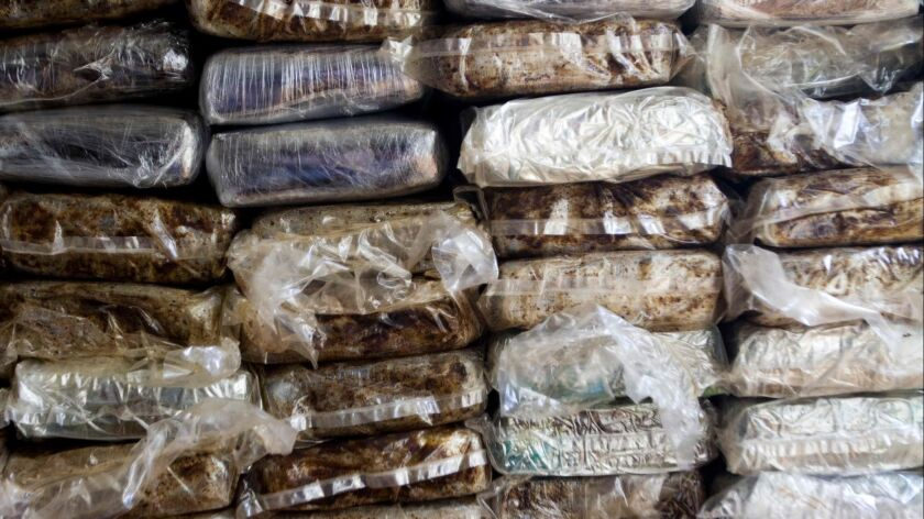 Seized cocaine is shown in a 2013 photo. A U.S. Marine veteran was named in a massive cocaine trafficking indictment in San Diego this week.
