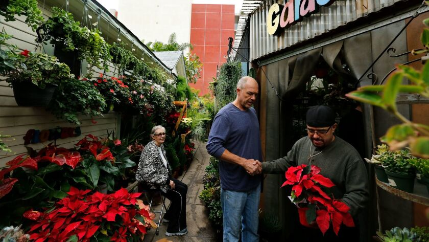Mickey Hargitay shakes hands with Virgilio Guzman as he makes his way with a poinsettia.  Guzman is a maintenance worker at the nursery.