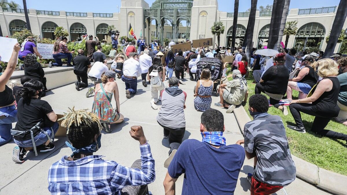 Image of article 'Protests continue across San Diego County'