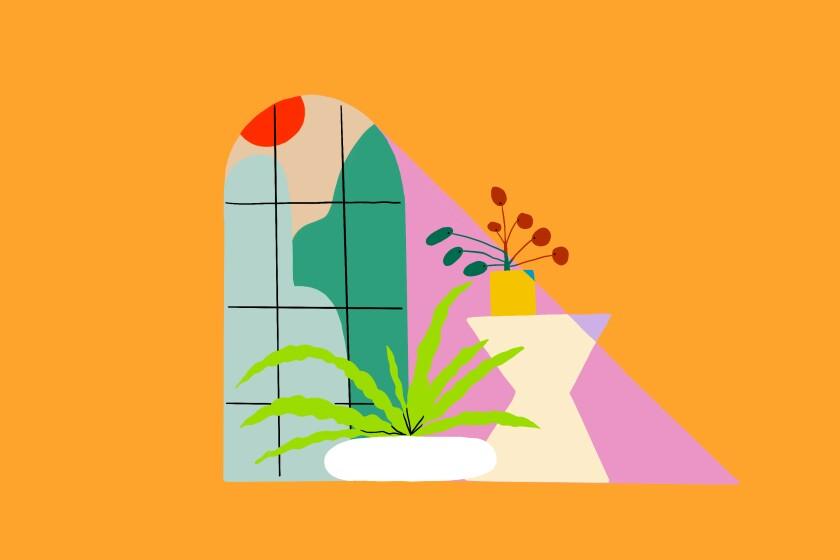 An illustration of heat-loving houseplants.
