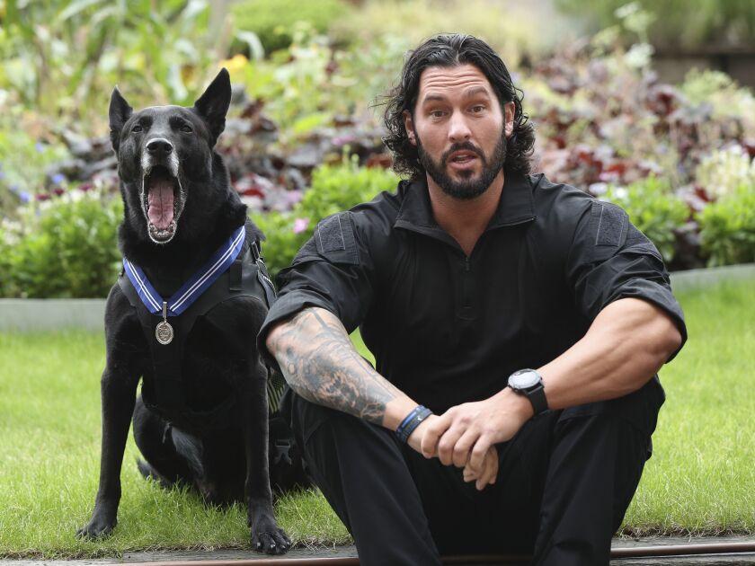 Britain Canine Order of Merit