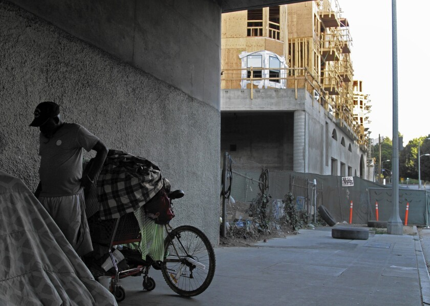 About a dozen people have been living underneath a 110 Freeway overpass above Temple Street.