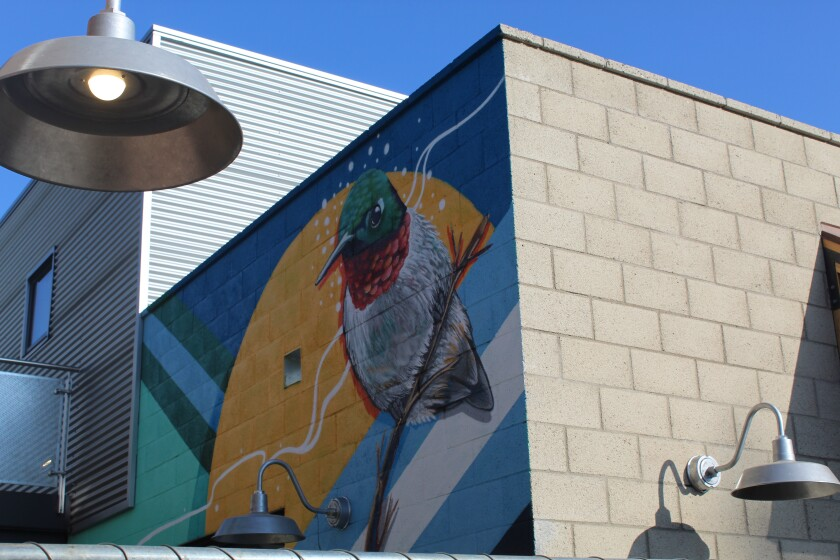 A hummingbird on the side of the 330 Cedros building is visible from the street, behind the construction fence.