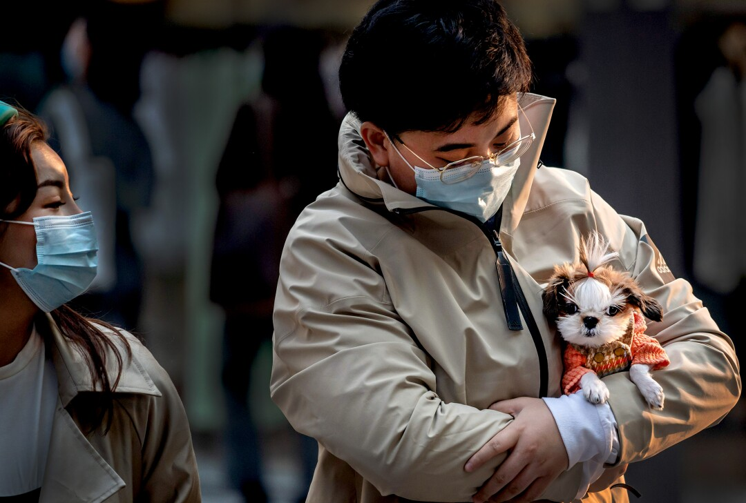 CHINA: A man (R) wearing a facemask amid the concerns over the COVID-19 coronavirus holds a dog as he walks at a shopping mall in Beijing on April 9, 2020.