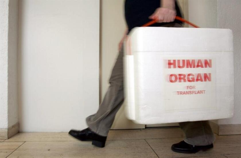 An employee of the German Foundation for Organ Transplantation carries a special cooling box for donated organs in Neu Isenburg, Germany. EFE/EPA/File
