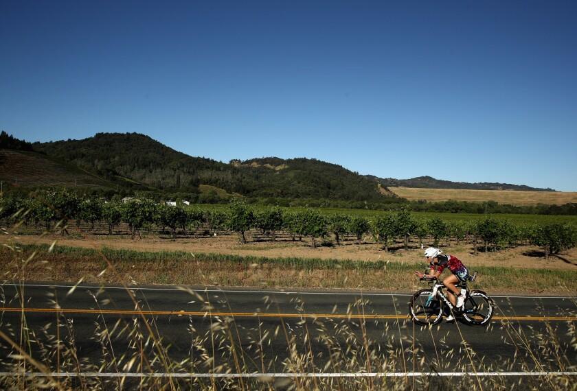 A cyclist biking through Santa Rosa, Calif.