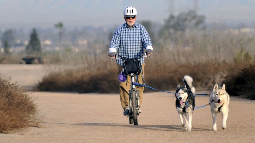 Jerry Clark of Rossmoor with his Huskies Koda, left, and Laska pulling him on his scooter. This was