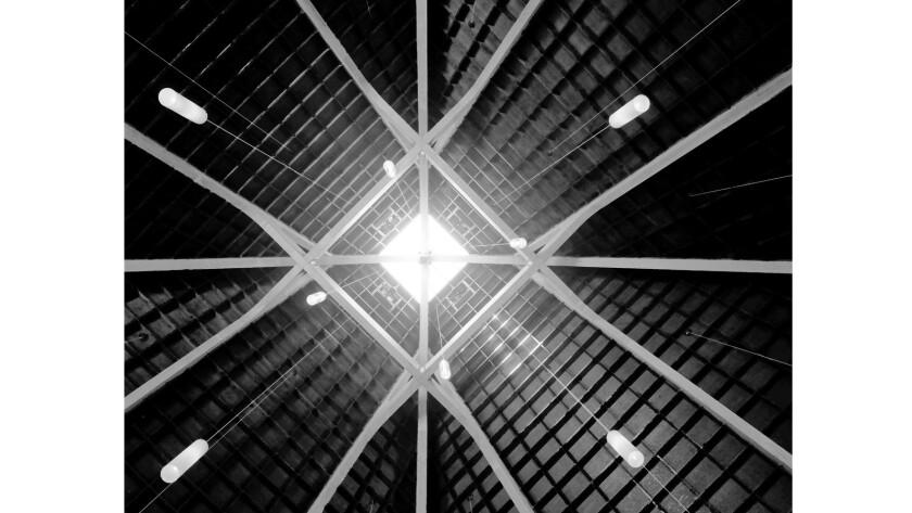 Wayne Thom's photographs