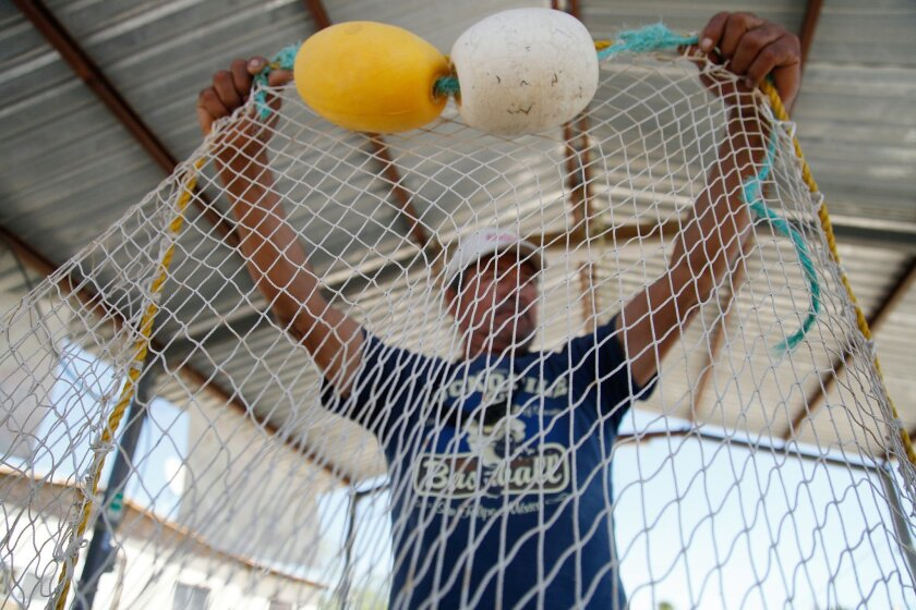 Arnoldo Valenzuela Armenta lifts up a vaquita-friendly trawl net or chango ecologico that is an alternative for fishermen in the expanded gill net-free zone.
