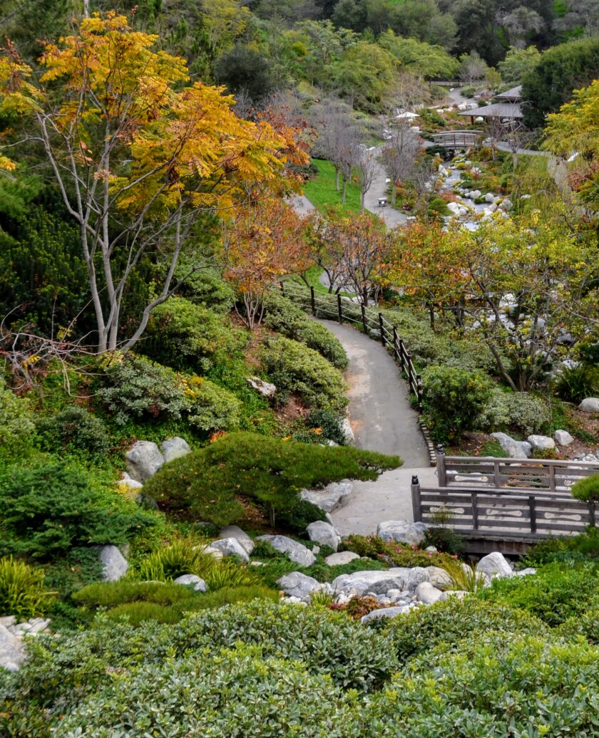 SanDiegoJapaneseFriendshipGarden.JPG