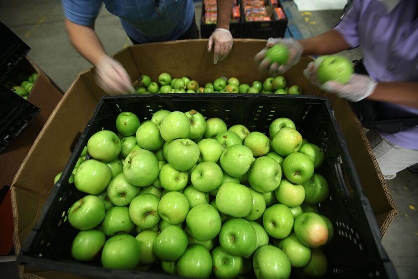 Volunteers at Feeding America sort through tons of produce and grains before separating them into palettes for delivery to different food banks, schools and other programs that distribute food to t
