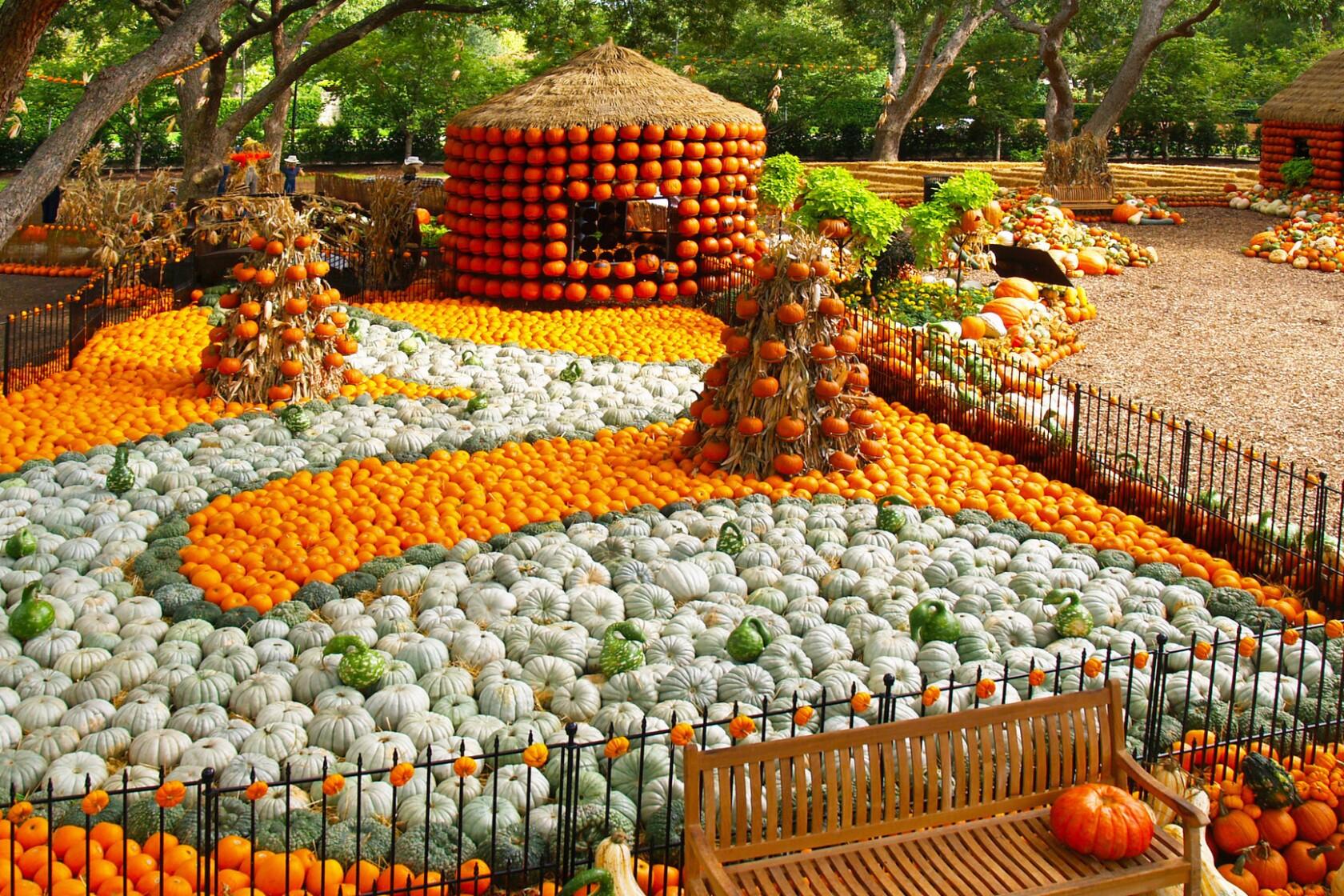 Dallas Arboretum Botanical Garden Shows Off A Plethora Of
