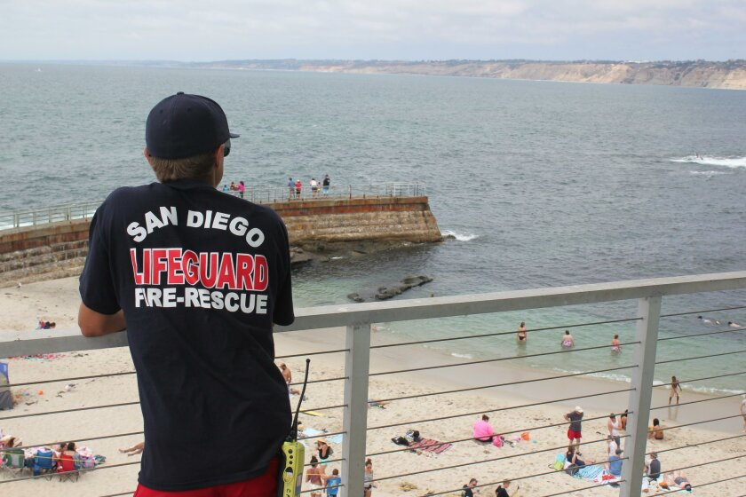 'I've been in the ocean longer than I can remember,' lifeguard David Dupont said.